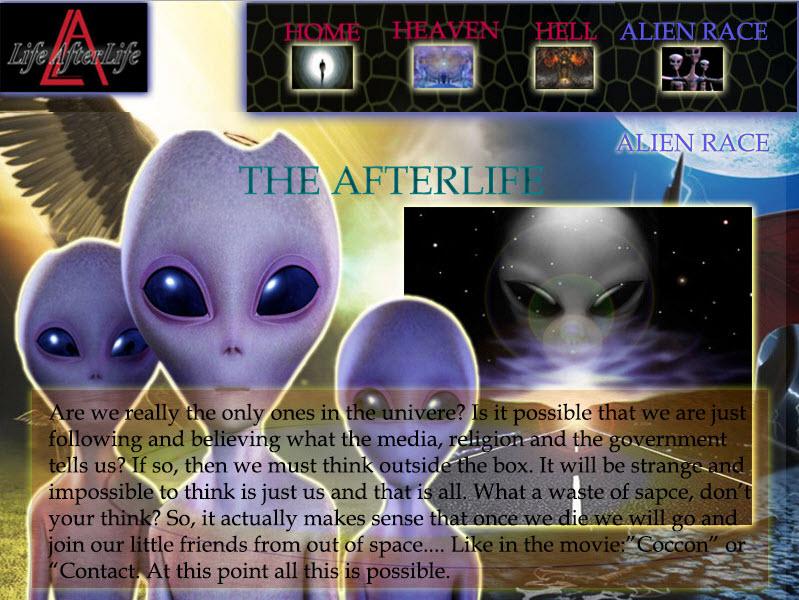 The Afterlife Website-Design